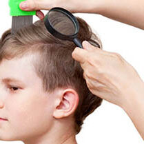head-lice-symptoms